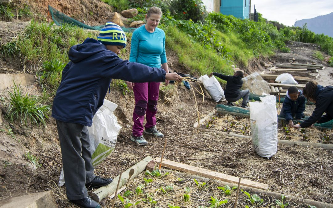 ¿Cuál es la diferencia entre ayuda humanitaria y cooperación al desarrollo?