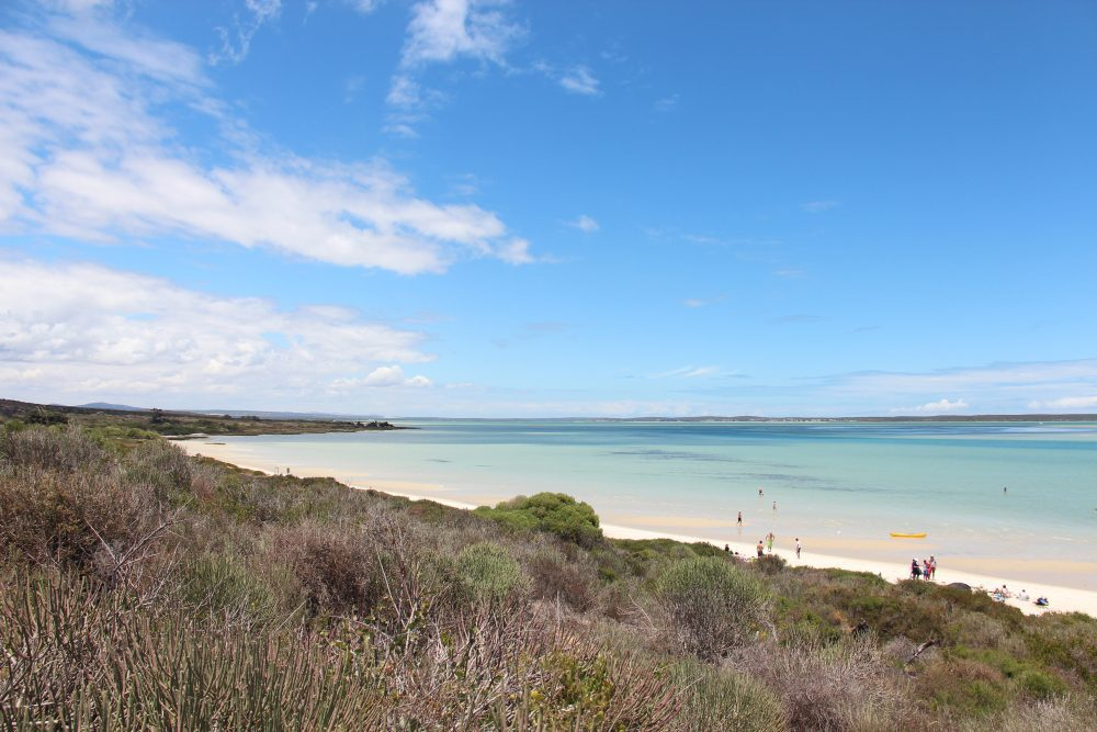 playas en sudafrica langebaan shark bay