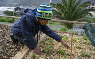 Actividades de voluntariado en África