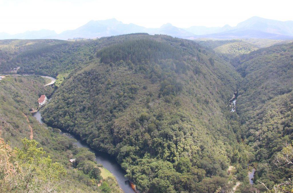 TOP 20 de curiosidades de Sudáfrica