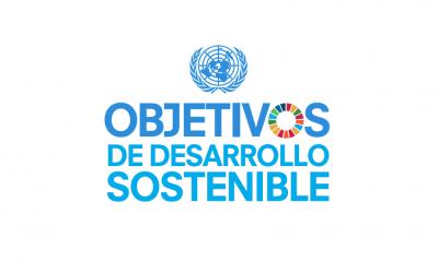 Los Objetivos de Desarrollo Sostenible (ODS)